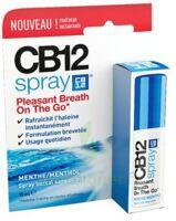 CB 12 Spray haleine fraîche 15ml à Mantes-La-Jolie