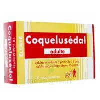 COQUELUSEDAL ADULTES, suppositoire à Mantes-La-Jolie