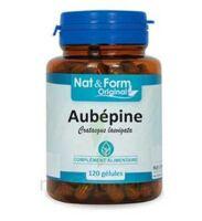 Nat&Form Bio Aubépine Gélules B/200 à Mantes-La-Jolie