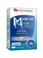Magné 300 Marin (2 mois) à Mantes-La-Jolie